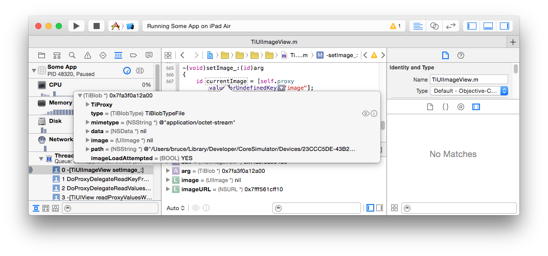 XCode variable inspection